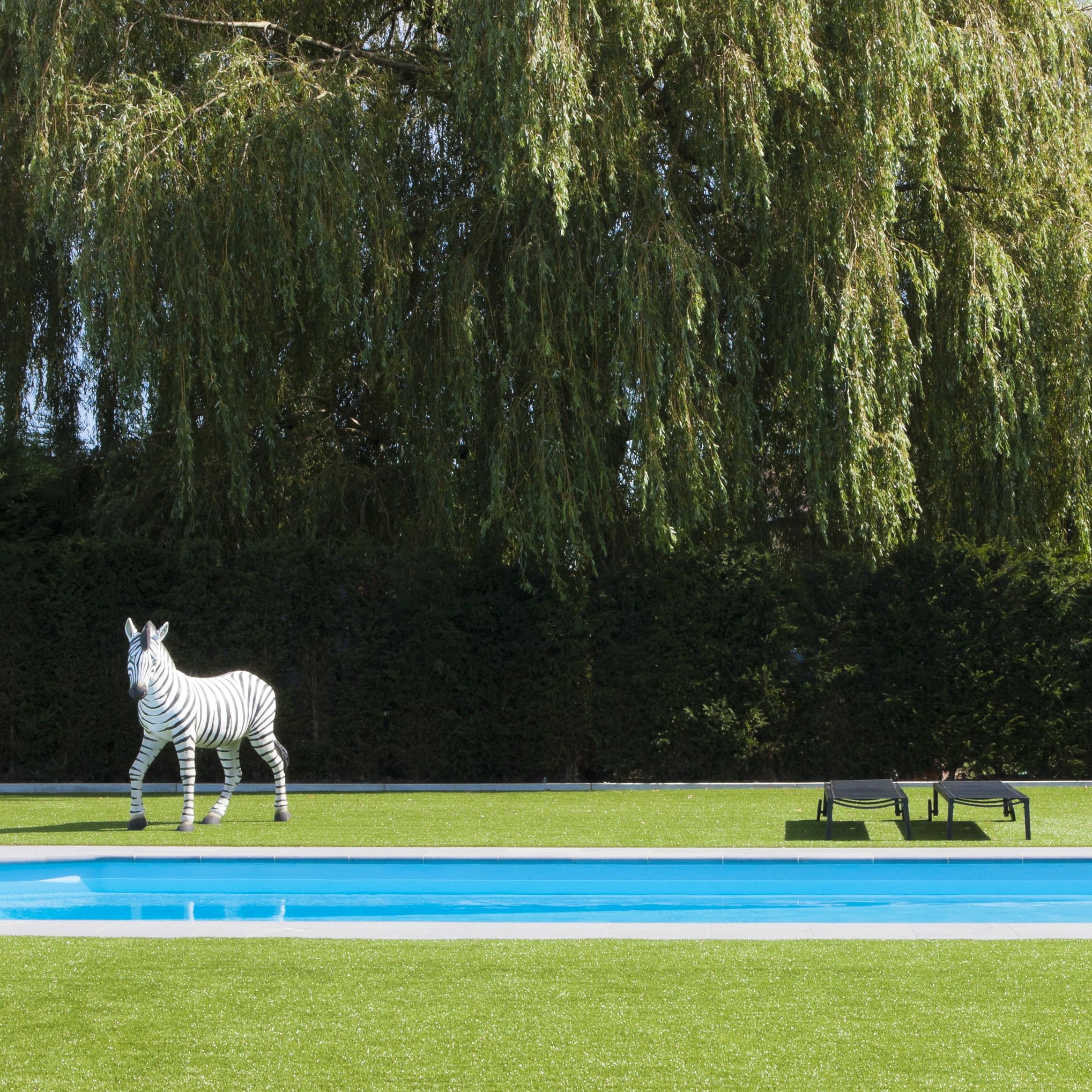 epoxy zwembad