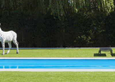 zebra1-zwembad